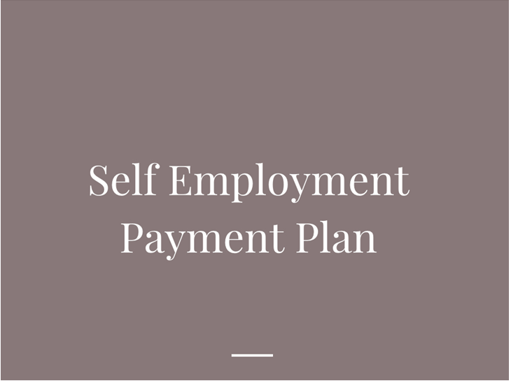 Self Employment payment plan